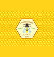 honey label template vector image vector image