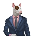 man with bullterrier head vector image