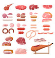 collection of meat vector image vector image