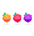 fresh juice label sticker design natural drink vector image