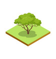 green decorative tree isometric 3d icon vector image