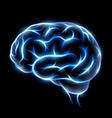 human brain Stock vector image vector image
