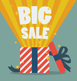 Big sale with a Christmas gift box vector image vector image