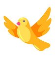 decorative yellow bird vector image