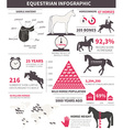 Equestrian infographic vector image