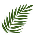 fern frond leaf icon cartoon style vector image vector image