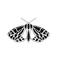 moth in doodle style vector image vector image