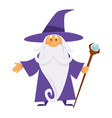 old magician or wizard witchcraft and warlock vector image vector image