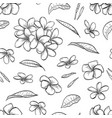 seamless pattern of plumeria flowers vector image vector image