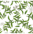 stevia seamless botanical pattern vector image vector image