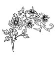 vintage victorian floral elements in black and vector image vector image