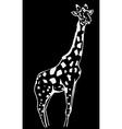 Hand-drawn pencil graphics giraffe Engraving vector image vector image