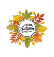 hello autumn pattern vector image