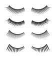 lashes set on white background vector image