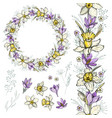 narcissus and crocus vector image
