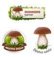 set of mushroom banner badge sticker vector image