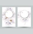set two invitation or congratulation cards vector image vector image