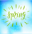 spring blue backdrop vector image vector image