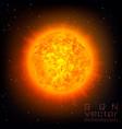 sun in the sky vector image