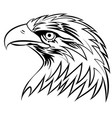 bald eagle or hawk head mascot graphic eps vector image vector image