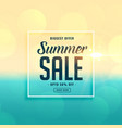 biggest summer sale beach background vector image vector image