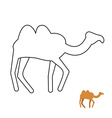 Camel coloring book Desert animal vector image