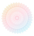 colourful mandala design vector image vector image