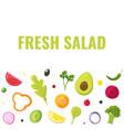 fresh salad healthy eating vegetarian market vector image