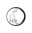one line cat design silhouettehand drawn vector image vector image