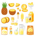 pineapple fresh healthy pine-apple yellow vector image vector image