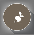 radish simple sign white icon on brown vector image vector image