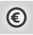 The euro icon Cash and money wealth payment vector image vector image