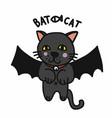 bat cat cartoon vector image vector image