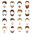 beards portraite of bearded man with male vector image