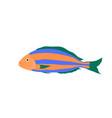 colorful sea fish cartoon vector image vector image