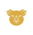 Pig icon golden head piggy on a white baclground