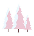 pines with snow scene vector image