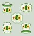 the avocado vector image
