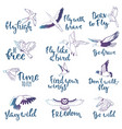 bird lettering text fly high and flying vector image vector image