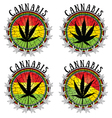 cannabis leaf design jamaican flag background vector image vector image