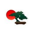 japanese bonsai tree logo silhouette and red sun vector image