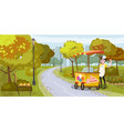 park seller and cart with ice cream seller vector image vector image