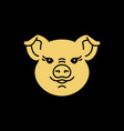 pig icon golden head piggy on a black baclground vector image vector image