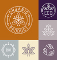 organic product label in outline vector image
