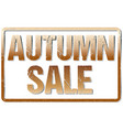 autumn sale typography isolated on white rubber vector image vector image