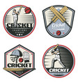 colored vintage cricket sport emblems set vector image vector image