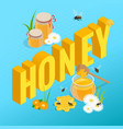 isometric jars with honey honeycomb and bee vector image vector image