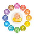 mineral vitamin supplement icons calcium iron vector image