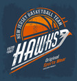 new jersey basketball team logo for clothing vector image