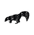 skunk mammal color silhouette animal vector image vector image